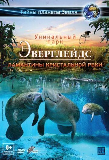 Эверглейдс 3D: Ламантины Кристальной реки / Adventure Everglades 3D: The Manatees of Crystal River (2012)